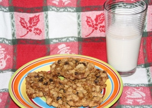 Gluten and Dairy free Oatmeal Cookies, Milk