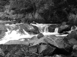 Stream, Black and White, Randy Cockrell