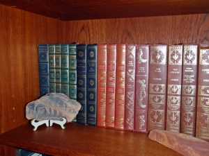 Books, Connie Cockrell