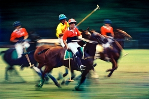Polo, Horses, Mounts, Men, Players